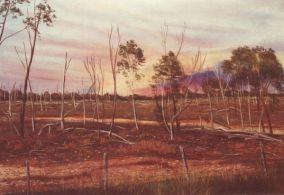 'Burning Skies' by Lynton Allan