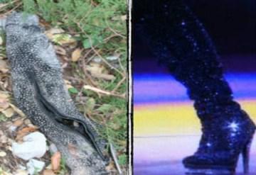 Publican foto de restos humanos del accidente de Jenni Rivera