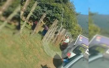 comuneros-bloquean-carretera-Uruapan-Michoacán