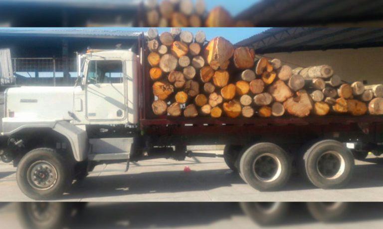 madera-decomisada