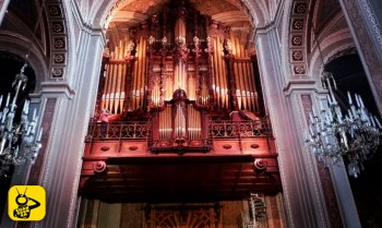 organo-Morelia
