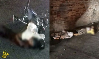 asesinatos Zamora