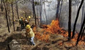 incendio Quiroga C