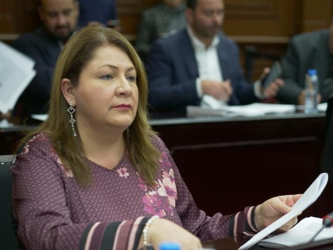 Cristina Portillo Ayala apuntó las posibles razones de la crisis financiera en Michoacán