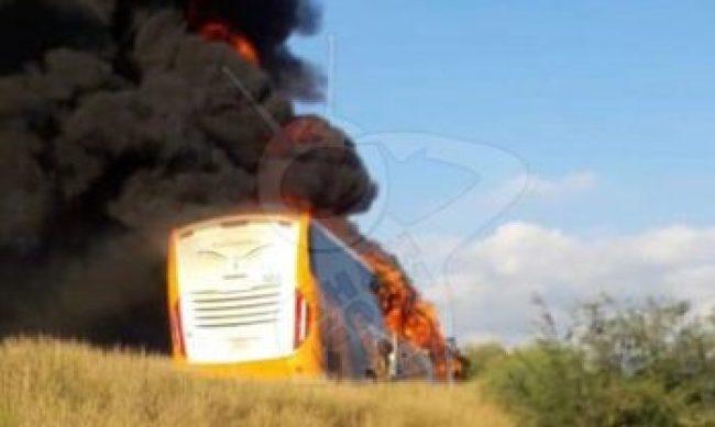 incendio Buenavista gatilleros Michoacán