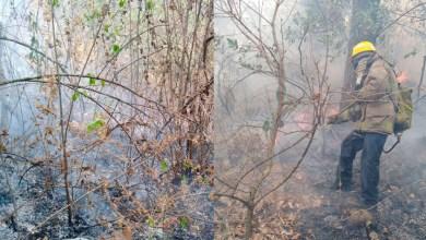Photo of #Morelia Protección Civil Ya Atiende Incendio En La Loma De Santa María