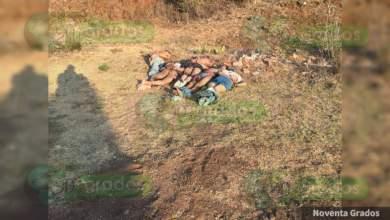 Photo of #Michoacán Encuentran 5 Cuerpos Maniatados, Y Baleados En La Erongarícuaro-Quiroga