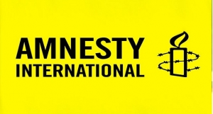 Amnesty International Accuses Military Of Extra-Judicial ...