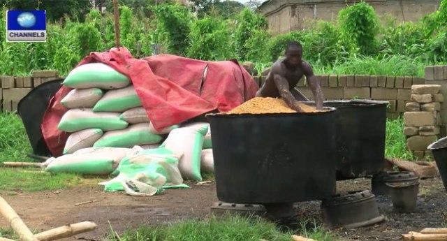 Rice Production-in-Nigeria-Abakiliki