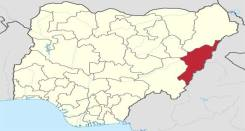 Two Adamawa district heads killed by Gunmen