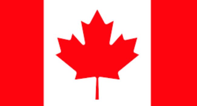 A picture of the Canadian flag used to illustrate the story.