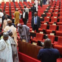 Senate Asks FG, States, LGs To Declare Emergency On Unemployment — Channels Television