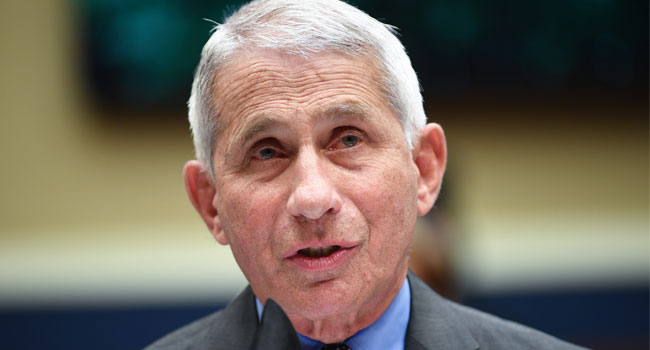 "Director of the National Institute for Allergy and Infectious Diseases Dr. Anthony Fauci testifies before the US Senate Health, Education, Labor, and Pensions Committee hearing to examine COVID-19, ""focusing on lessons learned to prepare for the next pandemic"", on Capitol Hill in Washington, DC on June 23, 2020. KEVIN DIETSCH / POOL / AFP"