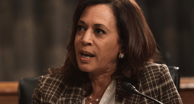 U.S. Sen. Kamala Harris (D-CA) speaks during a hearing before Senate Homeland Security and Governmental Affairs Committee at Dirksen Senate Office Building August 6, 2020 on Capitol Hill in Washington, DC. Alex Wong / POOL / AFP