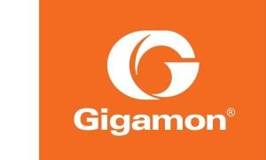 Arrow chiama Gigamon per visibilità e controllo pervasivo del traffico sicuro