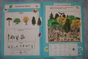Lapbook «Les animaux de la forêt»