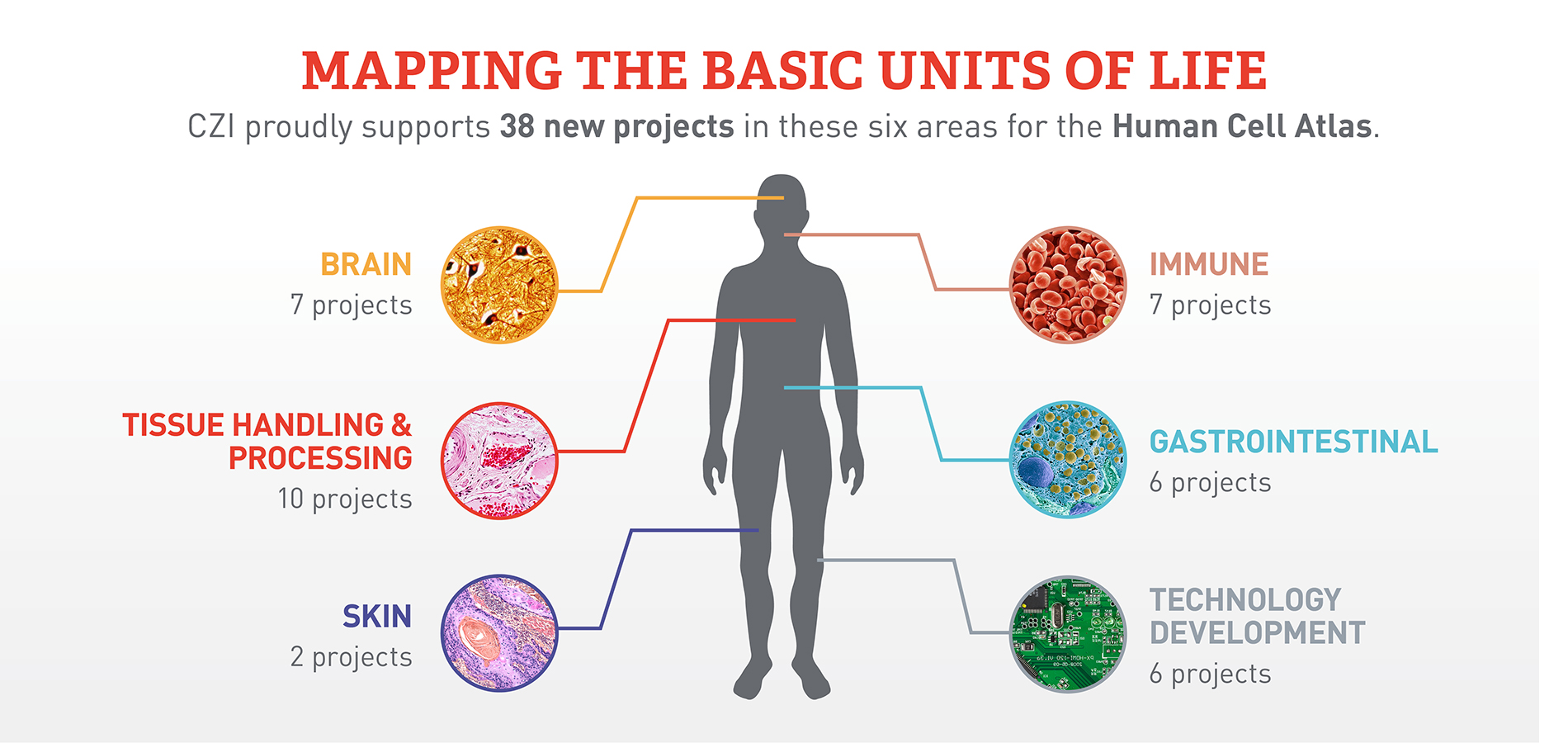 Mapping The Basic Units Of Life The Chan Zuckerberg