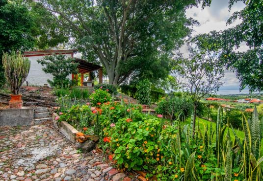 Home for sale in Chapala Haciendas