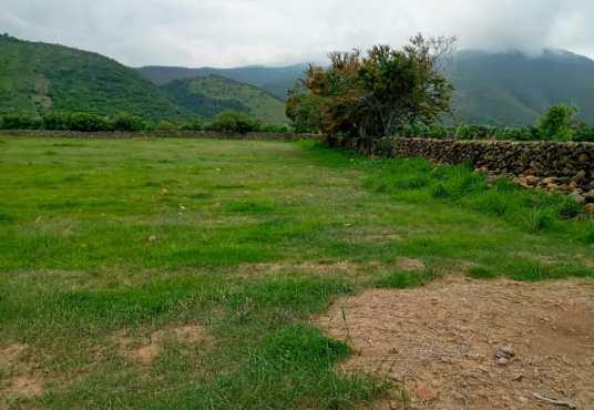 Lot for sale in San Luis Soyatlan
