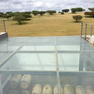 chapter fifty travel alentejo herdade malhadinha nova wine barrels and olive trees
