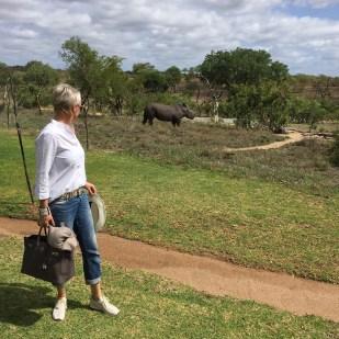 Sabi Sabi Earth Lodge Karin Barnhoorn Rhino