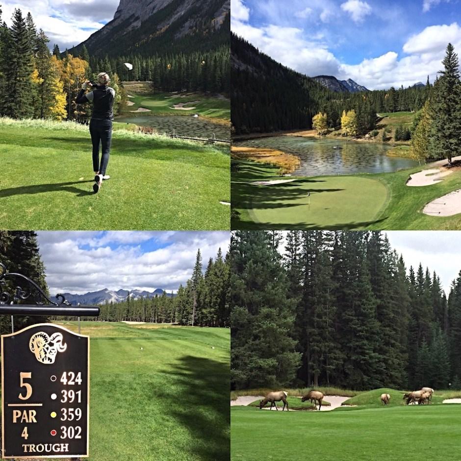 Fairmont Banff golf course Canadian Rocky Mountains golf