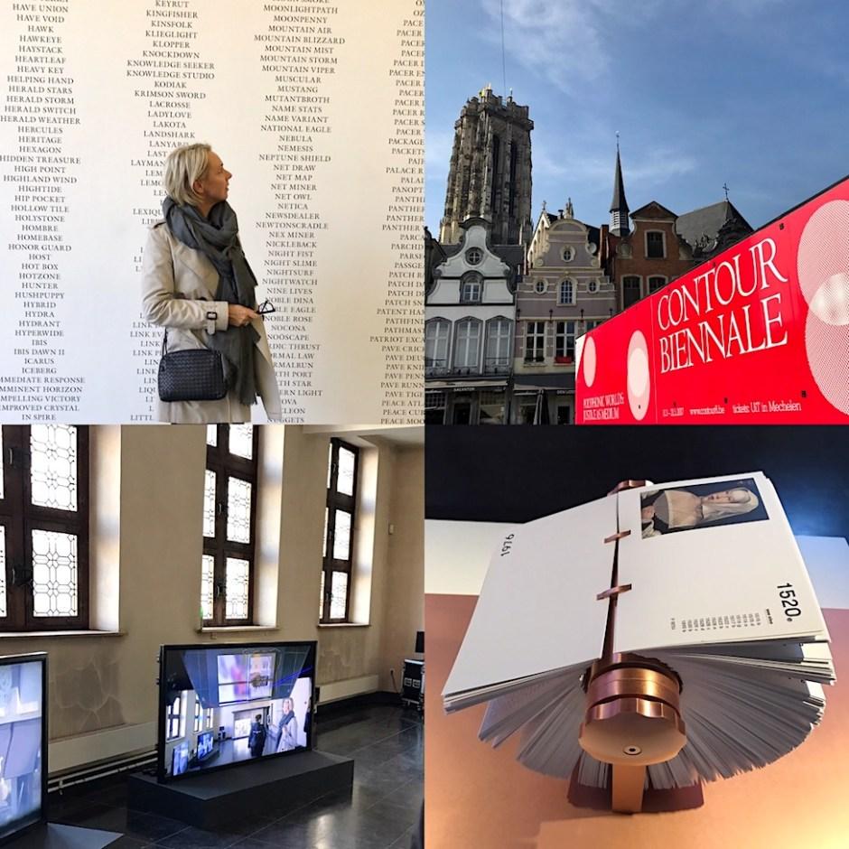 Mechelen Contour Biennale 8