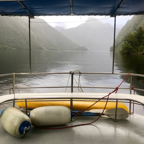 new zealand nature doubtful sound