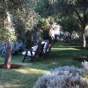 chapter fifty luxury travel morocco kasbah bab ourika garden