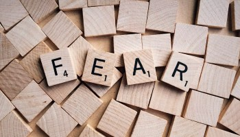 Taking the fear out of website design in Liverpool