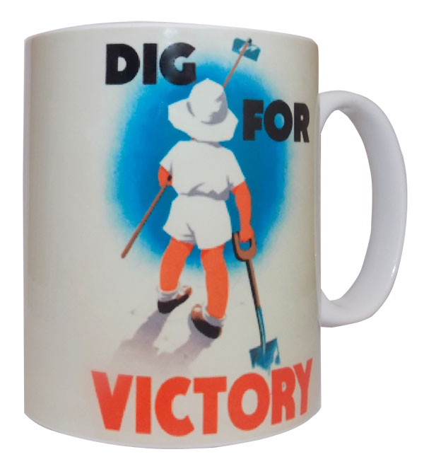 digvictory