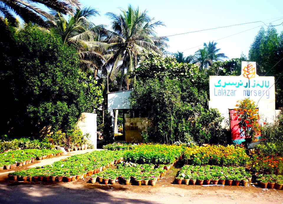Edited 52 - Lalazar Nursery: An Oasis in a Metropolis
