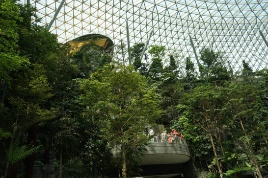 Jewel-Changi-Singapore-11