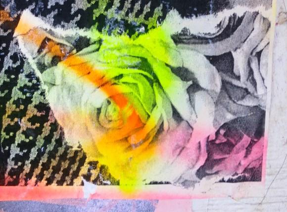 Dain NYC - Rose Detail - Soho