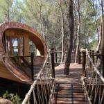The Fibonacci Tree-house, Spain