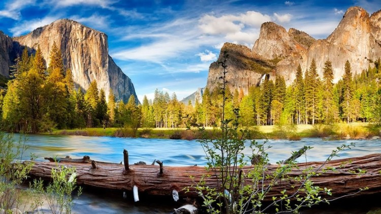 nature_trees_forests_rivers_yosemite_national_park_1920x1080_73948