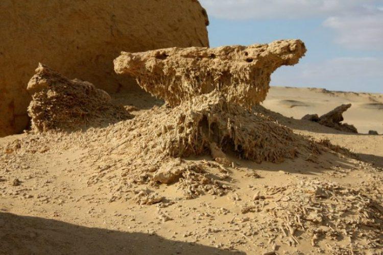 Wadi Al-Hitan (Whale Valley) Egypt2_resize