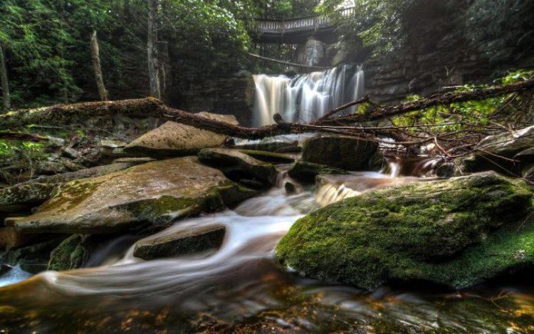 Elakala Falls Virginia13