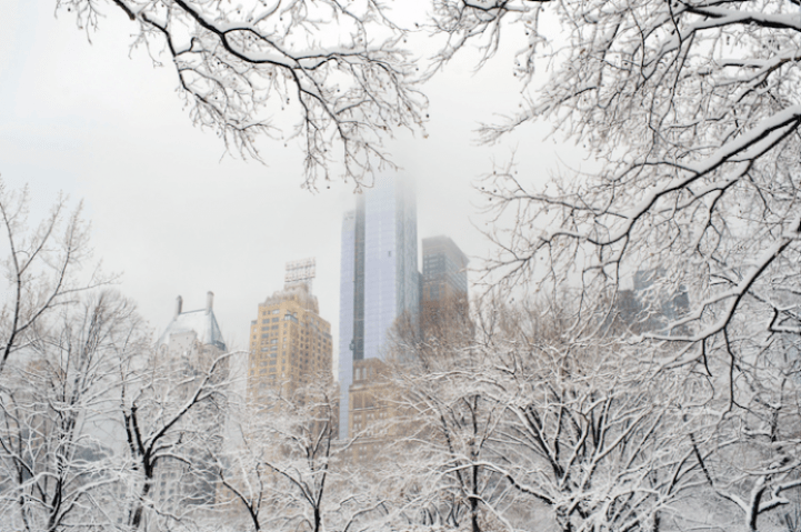 Wintery Wonderland of Central Park  4