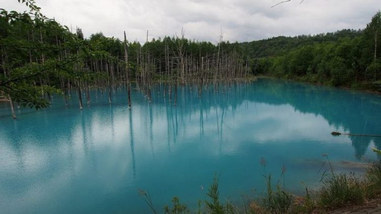 Blue Pond Haikkaido Japan17