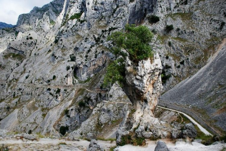 Cares Gorge Trail Adventure is one of the Most Fine-looking Hikes in Spain25