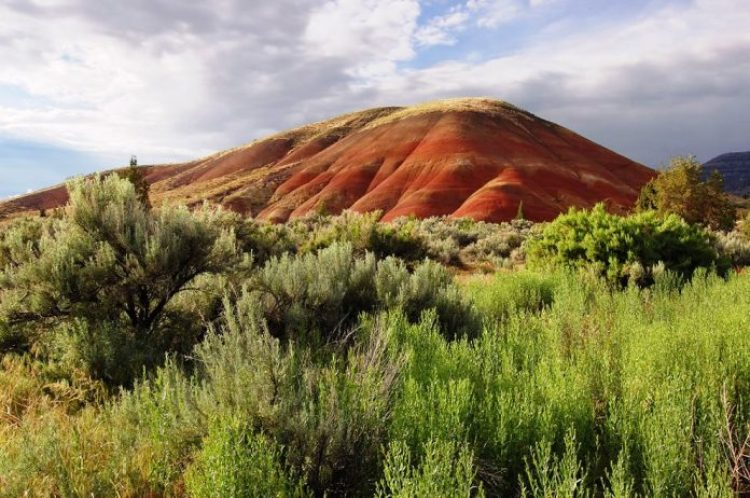 Painted Hills Oregon15