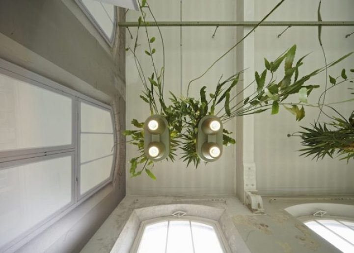 Unique Space-Saving Light Design with Potted Plants2