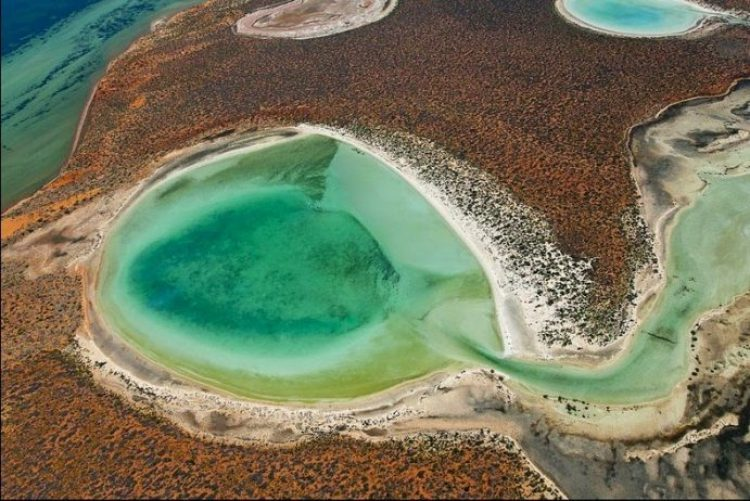 Gypsum Lakes or Birridas of Shark Bay3