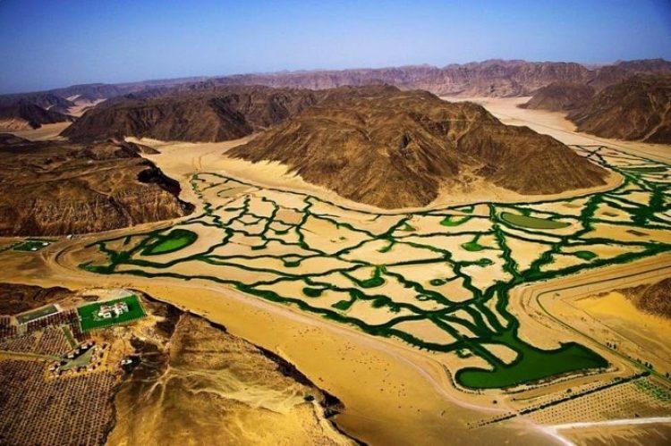 Organic Farming in the Desert of Wadi Rum3