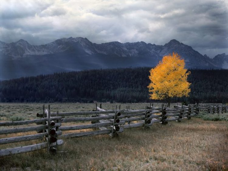 Idaho, horizontal, Northwest, America, America Engagement, America Mini, Rocky Mountain Wilderness, The West, landscape, scenic, nature, autumn, fall, sawtooths, sawtooth valley, mountains