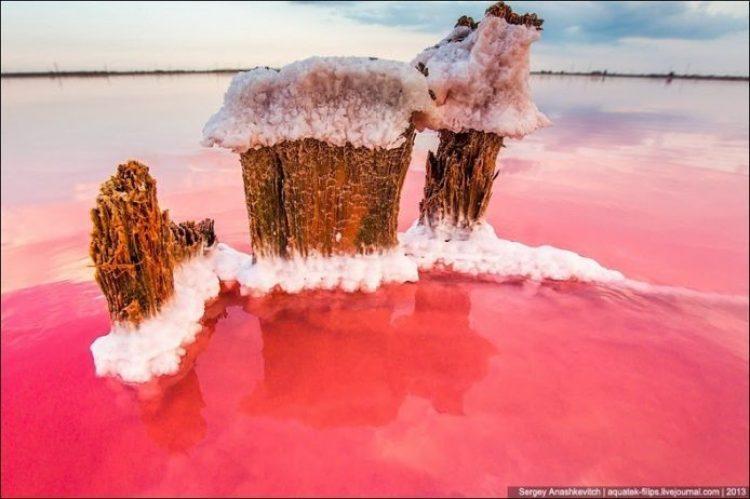 Sivash Salt Lagoons in the Crimean Peninsula17
