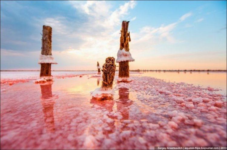 Sivash Salt Lagoons in the Crimean Peninsula18