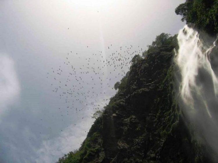 Wli Falls, Ghana0