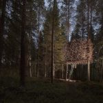 The Bird's Nest House Perched High in a Swedish Forest